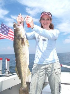 another trophy walleye taken off the bring it on ashtabula ohio lake erie charters